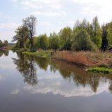 przemkowski park krajobrazowy-1